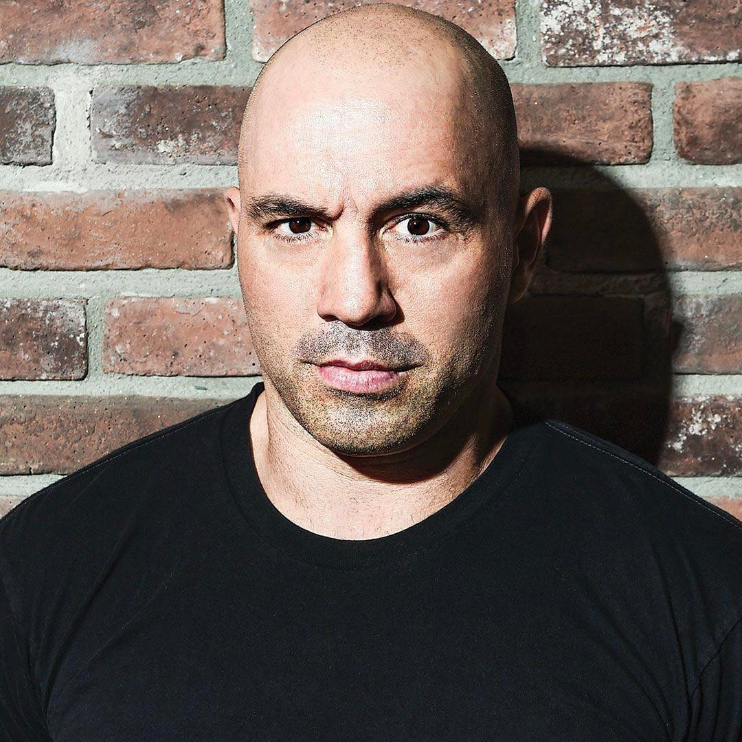 Joe Rogan Instagram username