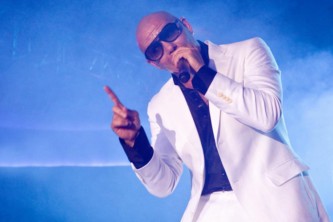Pitbull Instagram username