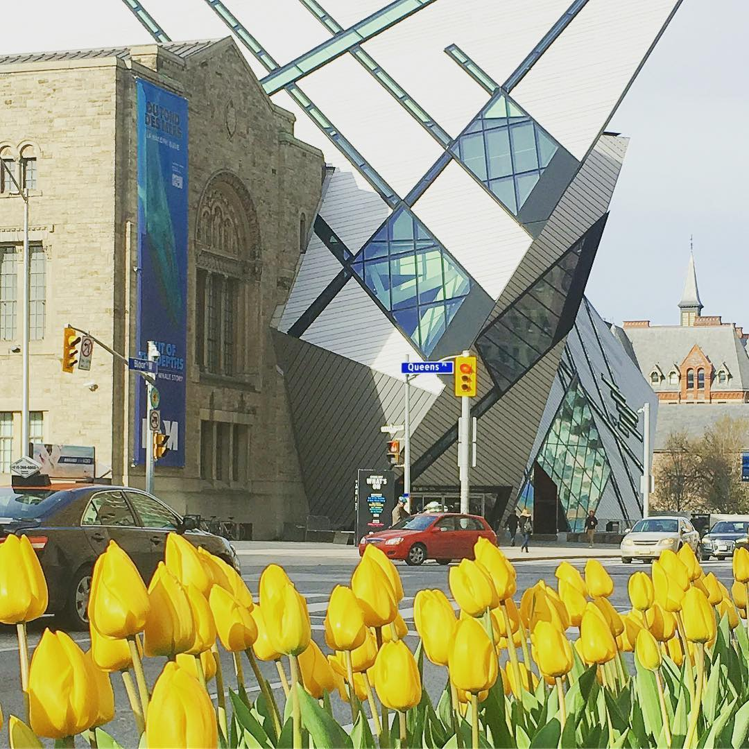 Royal Ontario Museum Instagram username